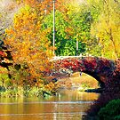 Autumn Paradise too! by Alberto  DeJesus