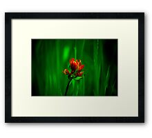 brush and canvas Framed Print