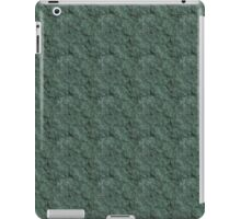 Chiseled Gray Green Rock iPad Case/Skin