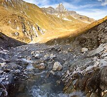 Alpine Creek by Walter Quirtmair