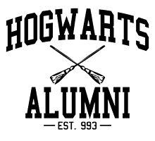 Harry Potter Hogwarts Alumni by rosesandvervain