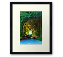 Through the Forest and Into the Light Framed Print