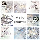 Merry Christmas card silver decoration collage by Delphimages