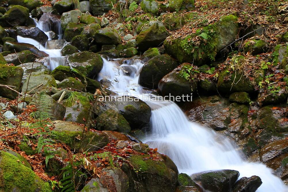 Waterfall 3 by annalisa bianchetti