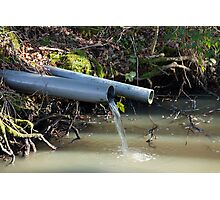 Water Outflow in Woodland Photographic Print