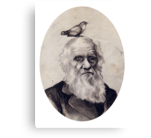 Darwin and the Finch Canvas Print