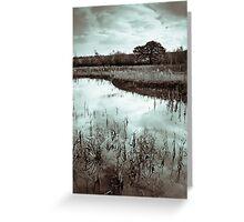 Autumn Ponds Greeting Card