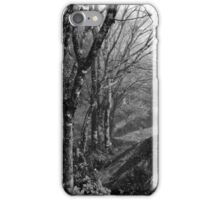 Forest under the fog iPhone Case/Skin