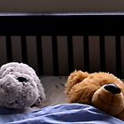 Duvet Day For Ted And Friend by lynn carter