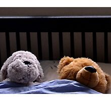 Duvet Day For Ted And Friend Photographic Print