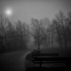 Path 002 - bw by Ian Ross Pettigrew