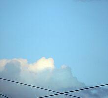 Sky Lines by Juli Lyons