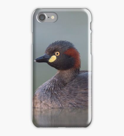 Australasian Grebe iPhone Case/Skin