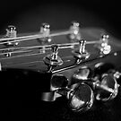 Tuners by ea-photos