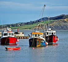 Local Fishing Boats ~ Lyme Regis Harbour by Susie Peek