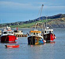 Local Fishing Boats ~ Lyme Regis Harbour by Susie Peek