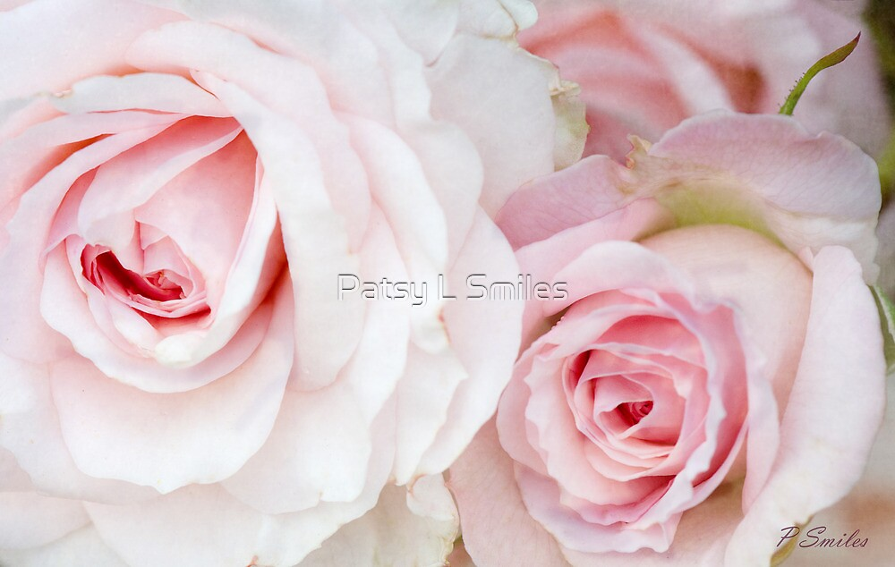 Peaceful Pink by Patsy Smiles