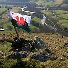 Flying high .... Rhandirmwyn by Richie Dean