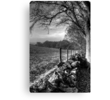 Chevin Dry Stone Wall #2 Mono Canvas Print