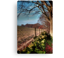 Chevin Dry Stone Wall #2  Canvas Print