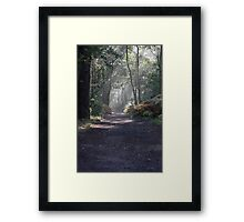 The Footpath Framed Print