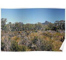 Trekking Tasmania Poster