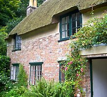 Thomas Hardy Cottage by magicaltrails