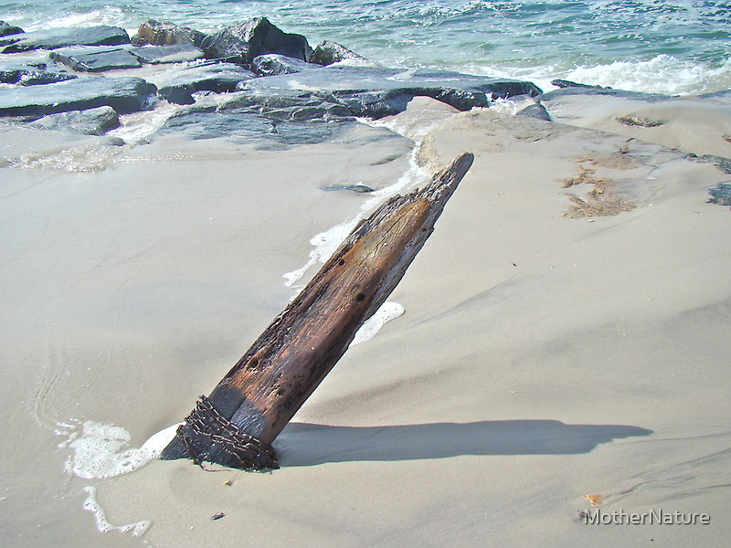 Driftwood Unchained by MotherNature