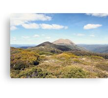 bright days on the trail Canvas Print