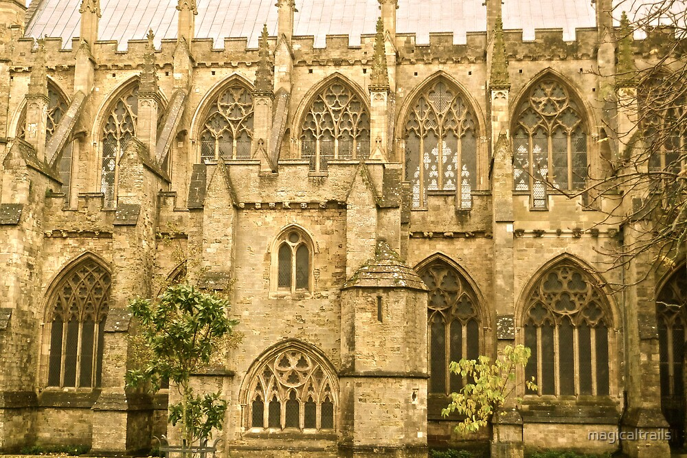 Windows of Exeter Cathedral by magicaltrails