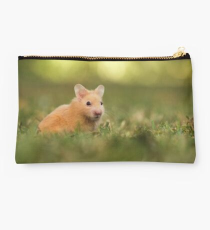 golden hamster pets on lawn Studio Pouch