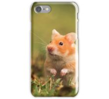 golden hamster pet iPhone Case/Skin