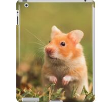 golden hamster pet iPad Case/Skin