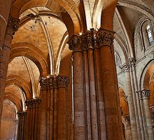 Spain. Salamanca. Old Cathedral. Vaults. by vadim19