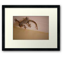 Fabulous Gecko Framed Print