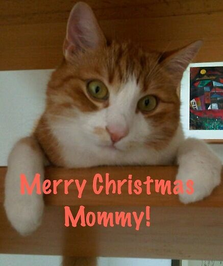 Merry Christmas Mommy by Heidi  Jacobsen