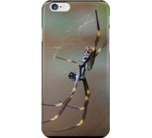 Golden Orb Spider iPhone Case/Skin