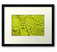 Romanesco Cauliflower Macro Framed Print