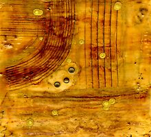 Brass Tokens - iPad Cover by © Angela L Walker