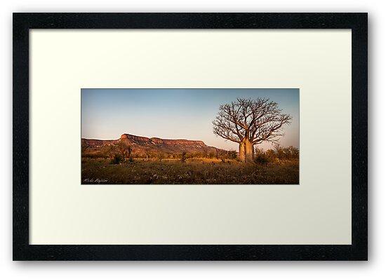 Kimberley Classic by Mieke Boynton