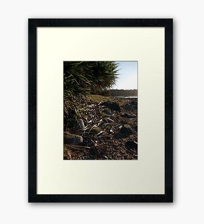 Spooky Point Tree Framed Print
