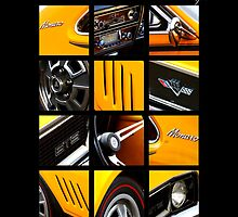 Holden Monaro HG GTS (10 grid colour) by blulime