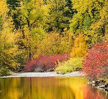 Nason Creek by Jim Stiles
