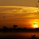 Yellow Water Sunrise by Barrie Collins