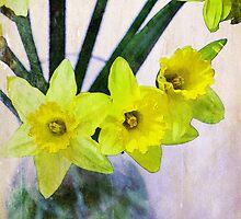 Daffodil Vase by Robert Worth