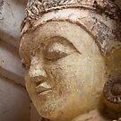 Buddha Statue - Bagan by Hege Nolan
