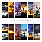 The Tree Graveyard Calendar 2013 by Simone Byrne