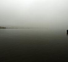 Rhine in November by heinrich