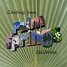 Greetings from Palm Springs  by Cody  VanDyke