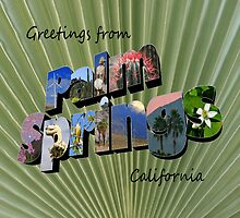 Greetings from Palm Springs  by Cody  VanDyke